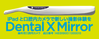DentalX Mirror